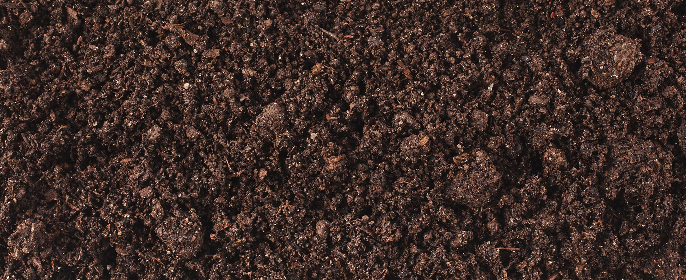Soil biotics for Soil vs dirt